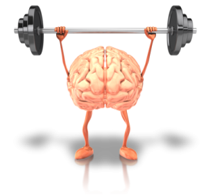 brain.fitness